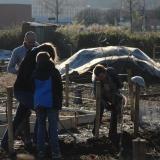 Helpers planten fruithagen