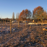 Op een koude ochtend voor de fruitbomenaanplant