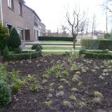 Plantwerken