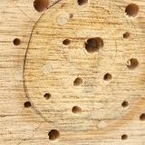 Kops geboord in te zacht hout