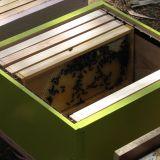 Binnenkant bijenkast