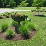 Gazonkanten groeien in het plantvak