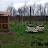 Bijenkasten en bijenhotel op begraafplaats Heimolen te Sint-Niklaas
