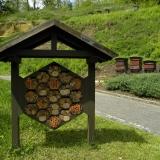 Bijenhotel en bijenkasten naast elkaar